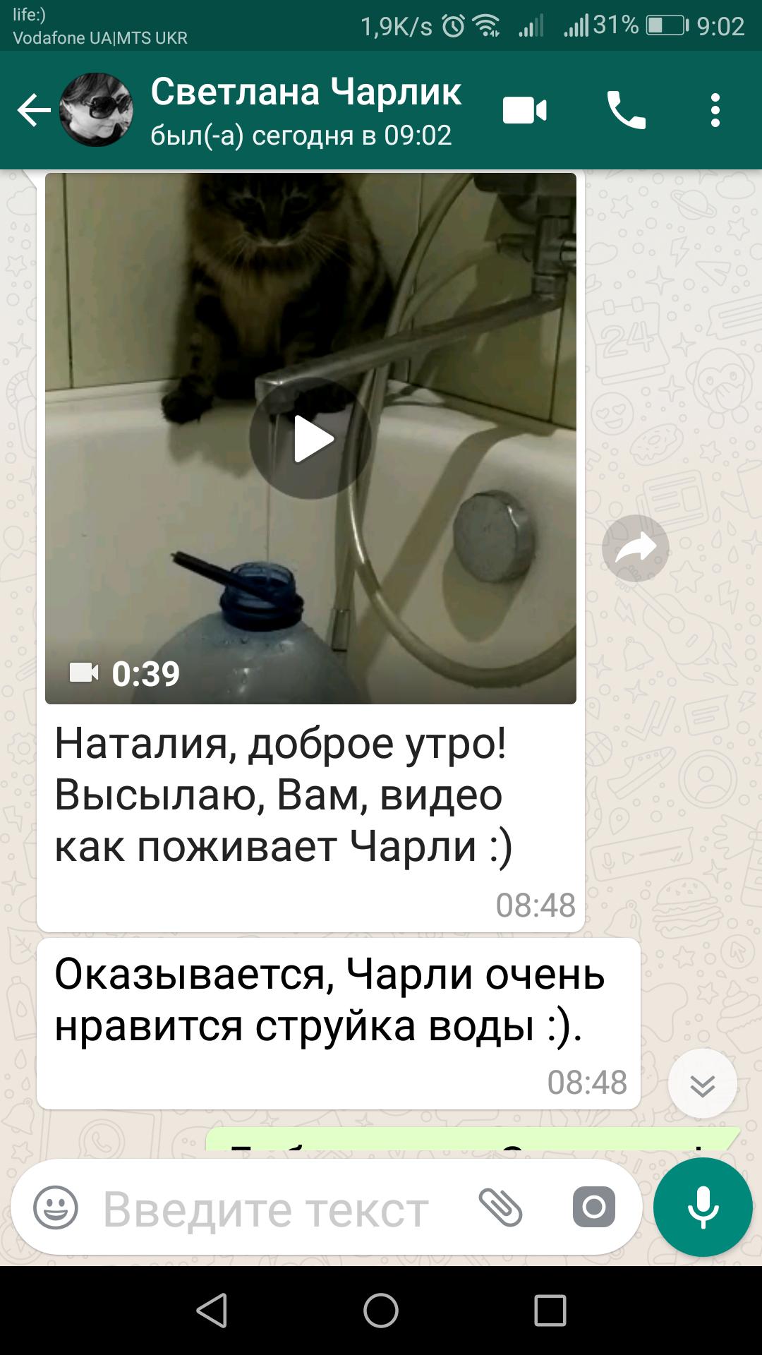 Screenshot_20190513-090244